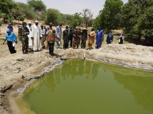 Visite des infrastructures existantes sur le site maraîcher de Léleygorou (Dosso). Ici un point d'eau utilisé pour la pisciculture.